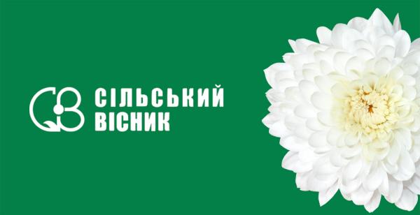 """Розробка інтернет-магазину для видавництва """"Сільський вісник"""""""