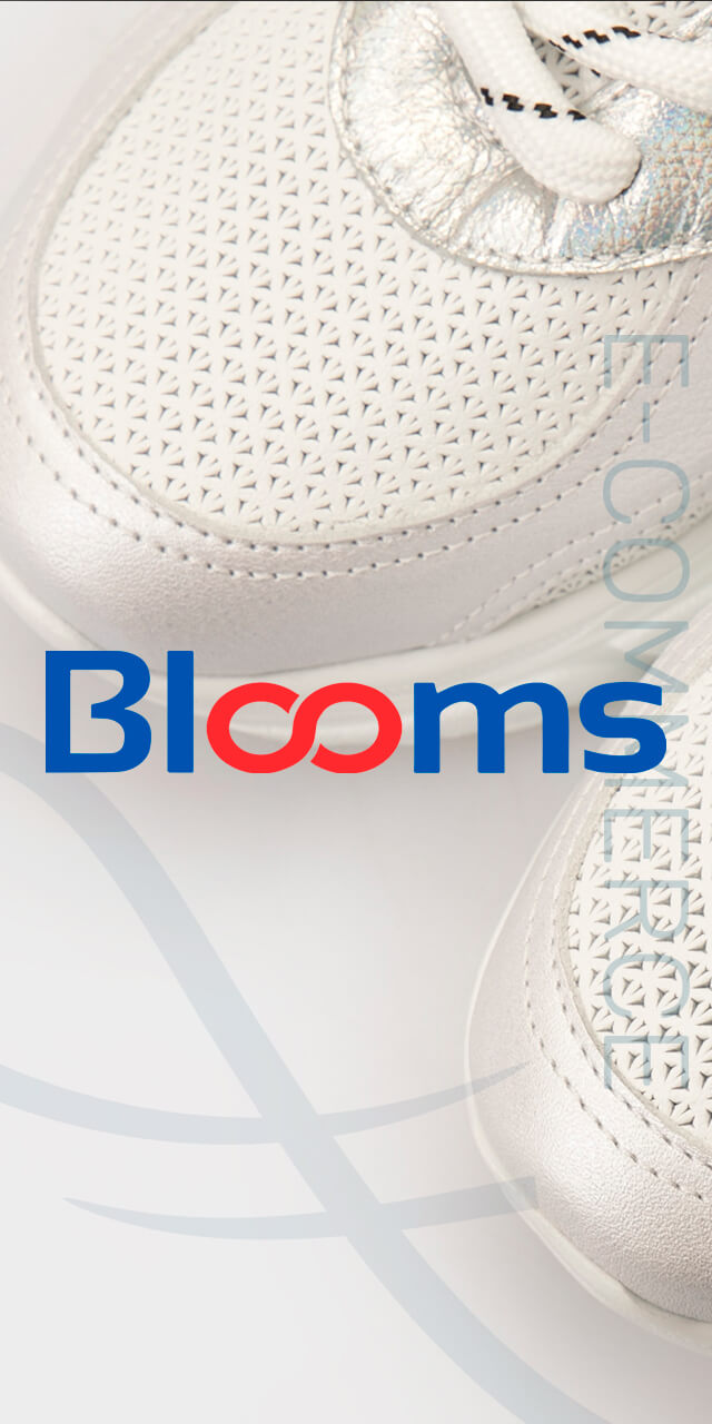Разработка интернет-магазина BLOOMS
