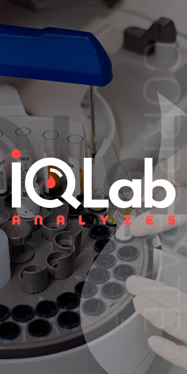 Разработка сайта автоматизированной лаборатории IQLab