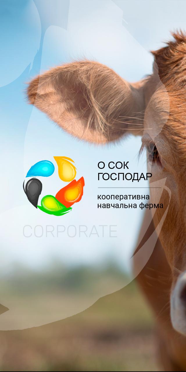 """Створення сайту для кооперативної ферми """"Про СОК ГОСПОДАР"""""""