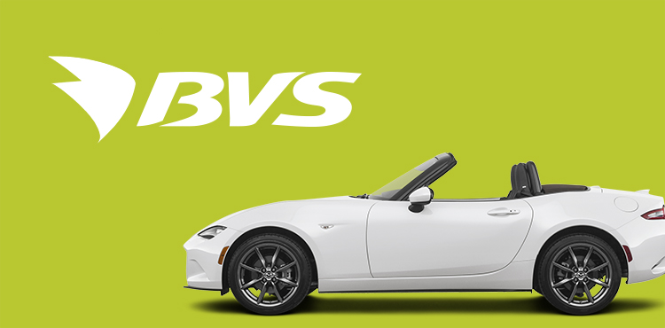 Создание сайта сети АЗС-BVS