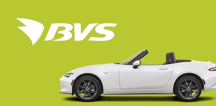 Разработка корпоративного сайта сети АЗС-BVS