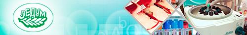 Создание интернет каталога медицинского оборудования ЛЕДУМ