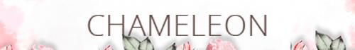 Интернет магазин обоев Chameleon