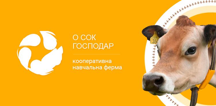 Создание новостного сайта MagFanatik